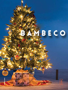 Picture of bambeco catalog from Bambeco catalog