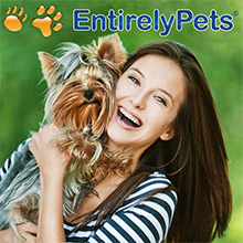 Picture of pet health solutions from EntirelyPets.com catalog