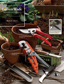 Picture of woodworkers tools from Garrett Wade catalog
