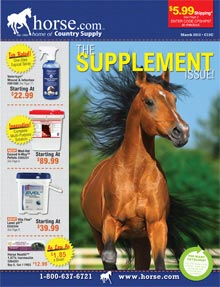 Picture of horse care from Horse.com catalog