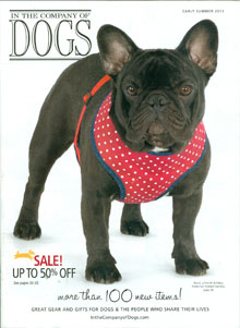 Picture of leather dog harness from In The Company of Dogs catalog