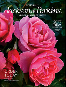 Outdoor Yard and Garden Catalogs Coupon Codes Catalogscom