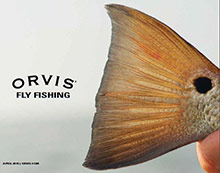 Picture of fly fishing catalog from Orvis catalog