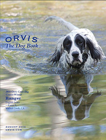 Picture of dog catalog from Orvis catalog