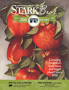 Picture of stark bros catalog from Stark Bro's catalog