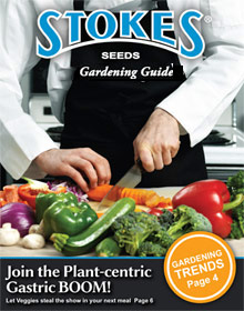 Picture of vegetable seed catalogs from Stokes Seeds catalog
