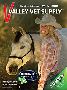 Valley Vet - Equine Edition