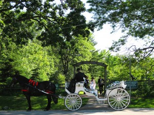 A park is one of the top ten most romantic wedding reception venues