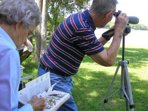 Bird watching is one of the top ten hobbies for retirees