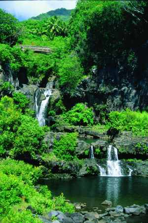 The road to Hana Hawaii is the top of all spring road trip destinations
