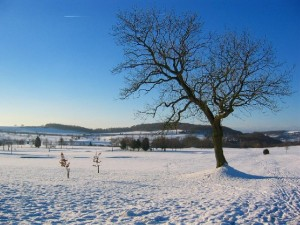 Snow is one of the top ten cool photos of the weather