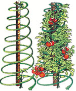 Veggie cages are one of the top ten expert gardener gifts