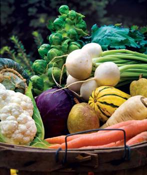 A list of the top ten fall garden vegetable recipes