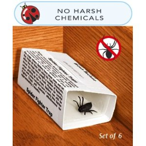 One of the best of pest protection for your home