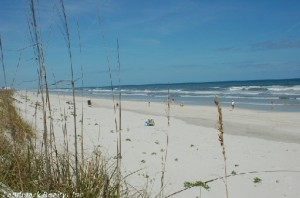 top 10 places to live in Florida Crescent Beach