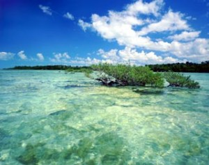 top 10 places to live in Florida The Florida Keys
