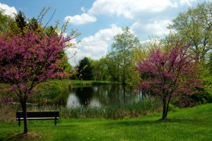 top 10 places to live in delaware Hockessin