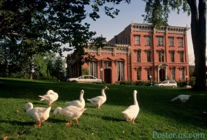 top 10 places to live in New York State saratoga springs