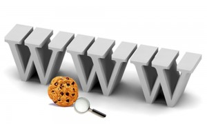 top 10 internet terms you need to know cookies