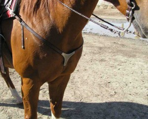horse breast collar