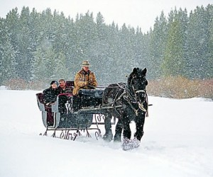 couple on sleigh ride in snow