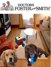Image of dog toy ideas from Doctors Foster and Smith catalog