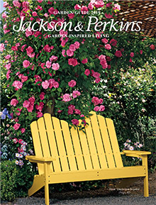 Picture of jackson and perkins catalog from Jackson & Perkins catalog