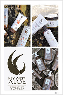 Picture of key west aloe from Key West Aloe catalog