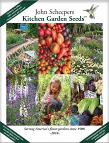 Picture of kitchen garden seeds from Kitchen Garden Seeds catalog