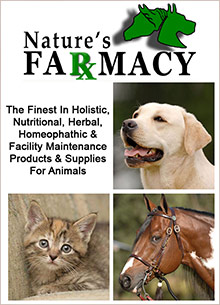 Picture of natures farmacy catalog from Nature's Farmacy catalog