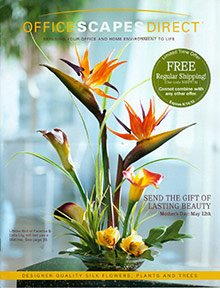 Picture of silk floral arrangements from Office Scapes catalog