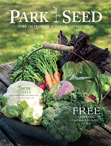 Picture of park seed company from Park Seed catalog