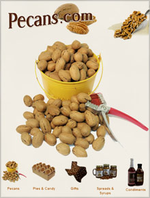 Picture of pecans from Pecans.com catalog