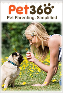 Picture of pet360 from Pet360 catalog