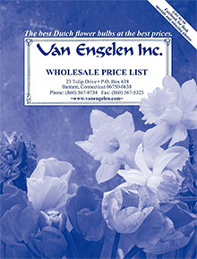 Picture of van engelen from Van Engelen catalog