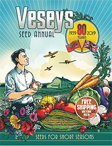 Picture of veseys catalog from Veseys catalog