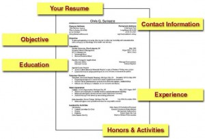 Prepare a solid resume to land the job