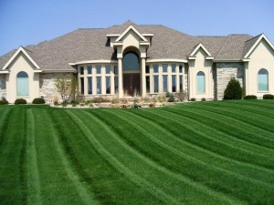 Reseeding your lawn is a spring home improvement project