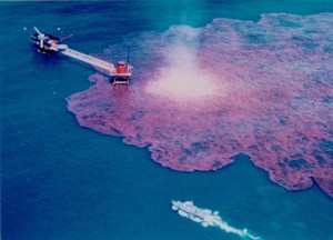 The BP oil spill is one of the top ten environmental disasters caused by humans