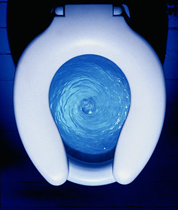 Flushing the toilet less helps conserve water