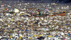 Garbage island is one of the top ten environmental disasters caused by humans