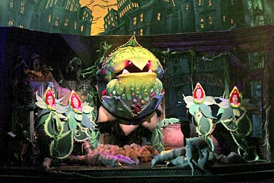 Little Shop of Horrors is one of the top ten high school musicals