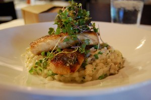 Risotto with truffles is an extravagant truffle recipe