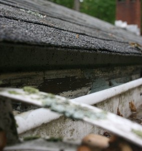 One of the top ten Spring home maintenance tips