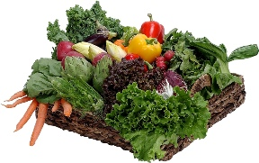One of the top ten pointers for vegetable gardening