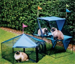 One of the best of cat owners catalogs