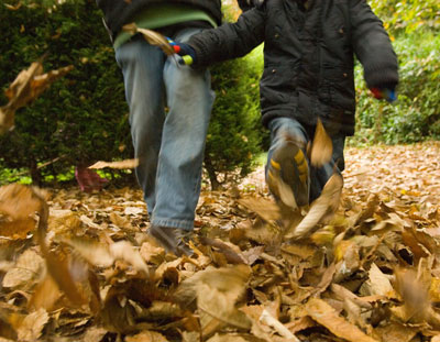 One of the top ten ways to enjoy leaves changing
