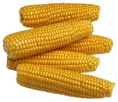 One of the top ten types of crops in the U.S.