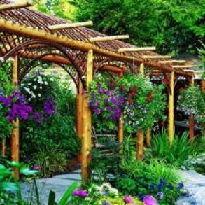 One of the top ten Mediterranean garden design ideas