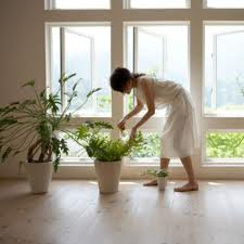 A list of the top ten ways to improve indoor air quality